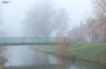 Foggy-Spalding