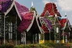 Fantasilandia,-Miracle-Gardens