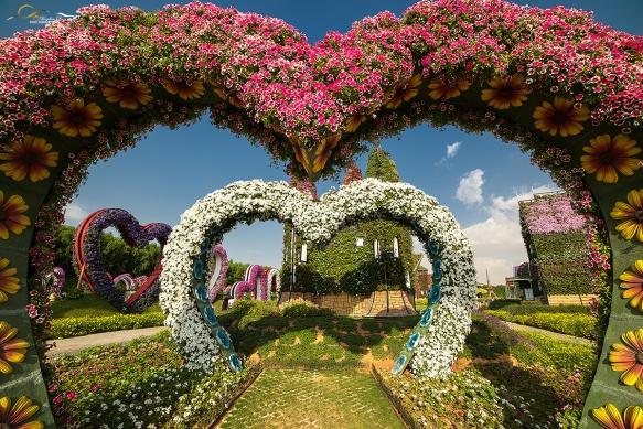 Miracle-gardens-Dubai